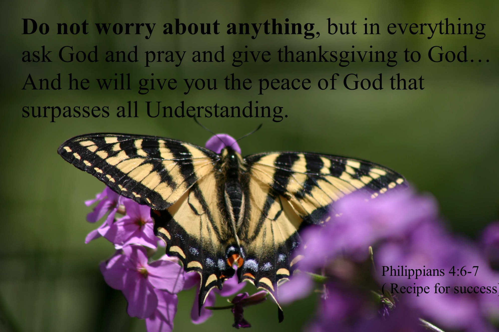 WORRY_Philippians_4_6to7_Do_not_worry_about_anything-1