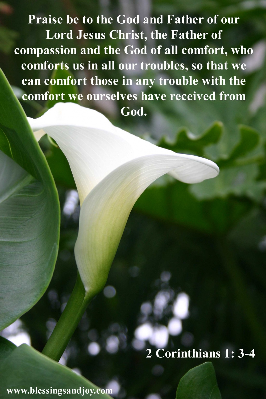 Comfort_2_Corinthians_1_3_to_4-35