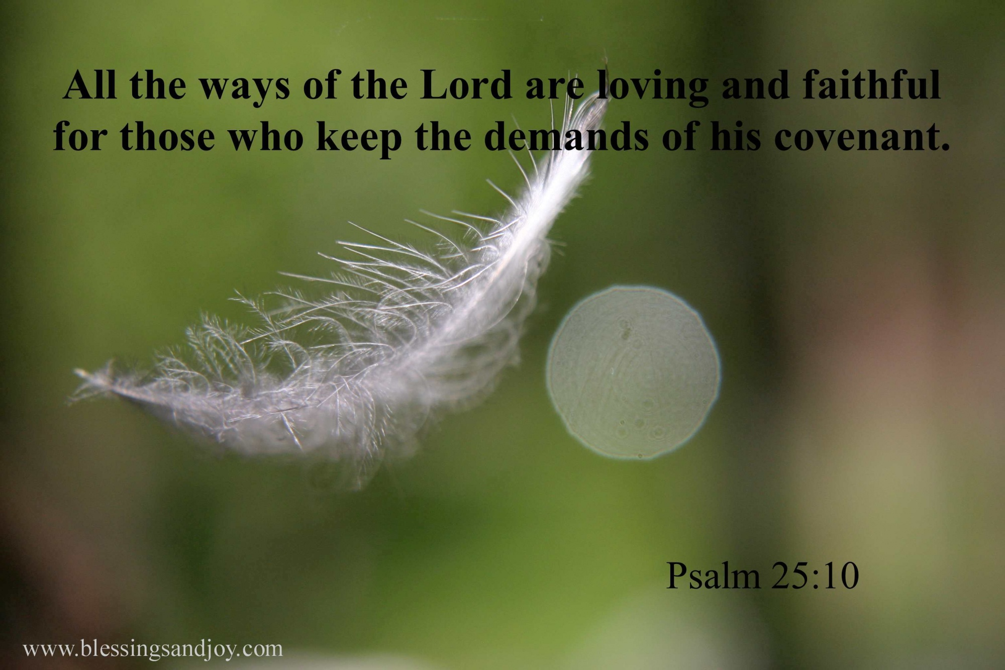 LOVE_Psalm_25_10_all_the_ways_of_the_Lord_are_loving.ch-41