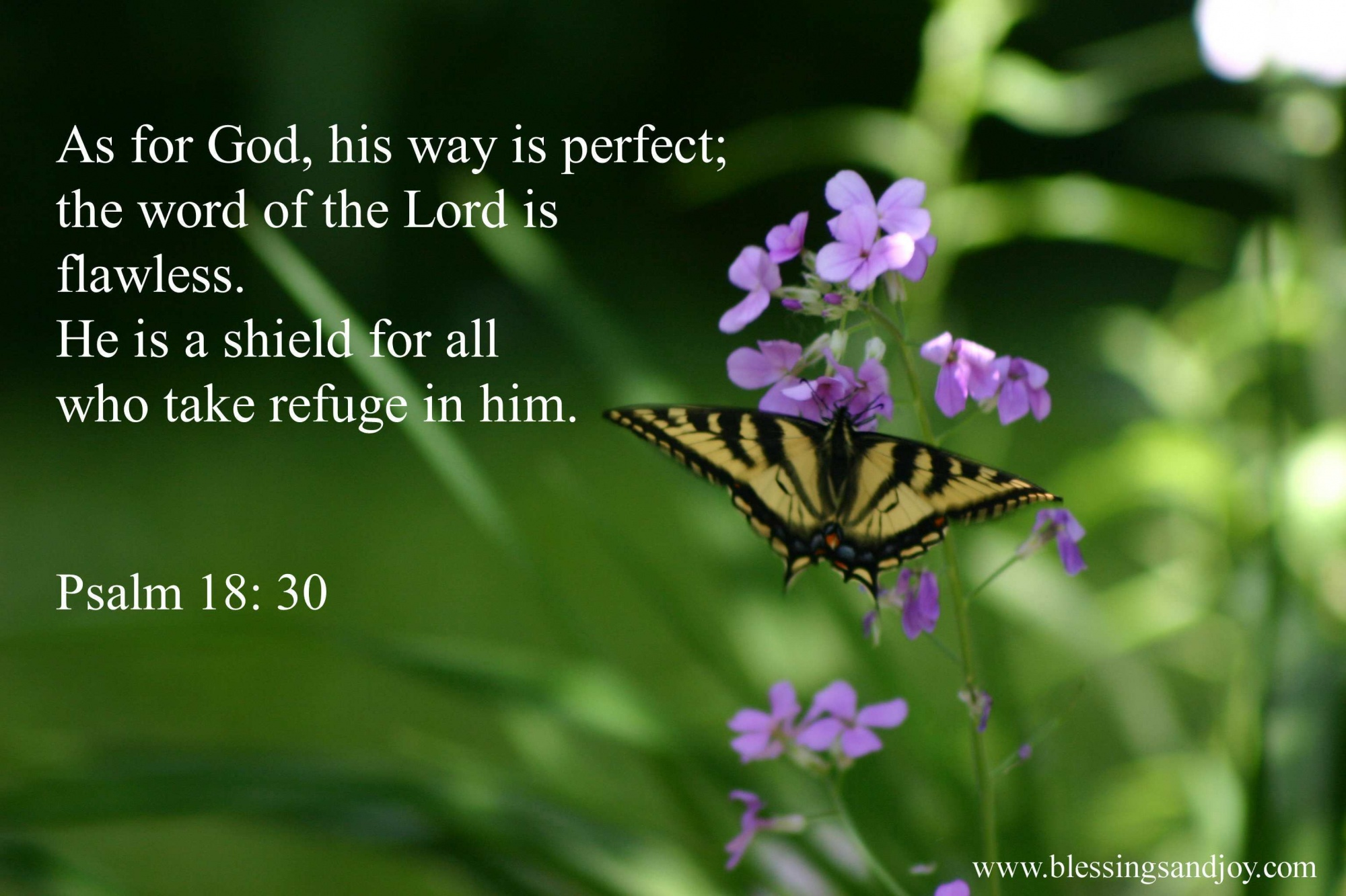 Psalm_18_30__weekly_bible_verse_one-60