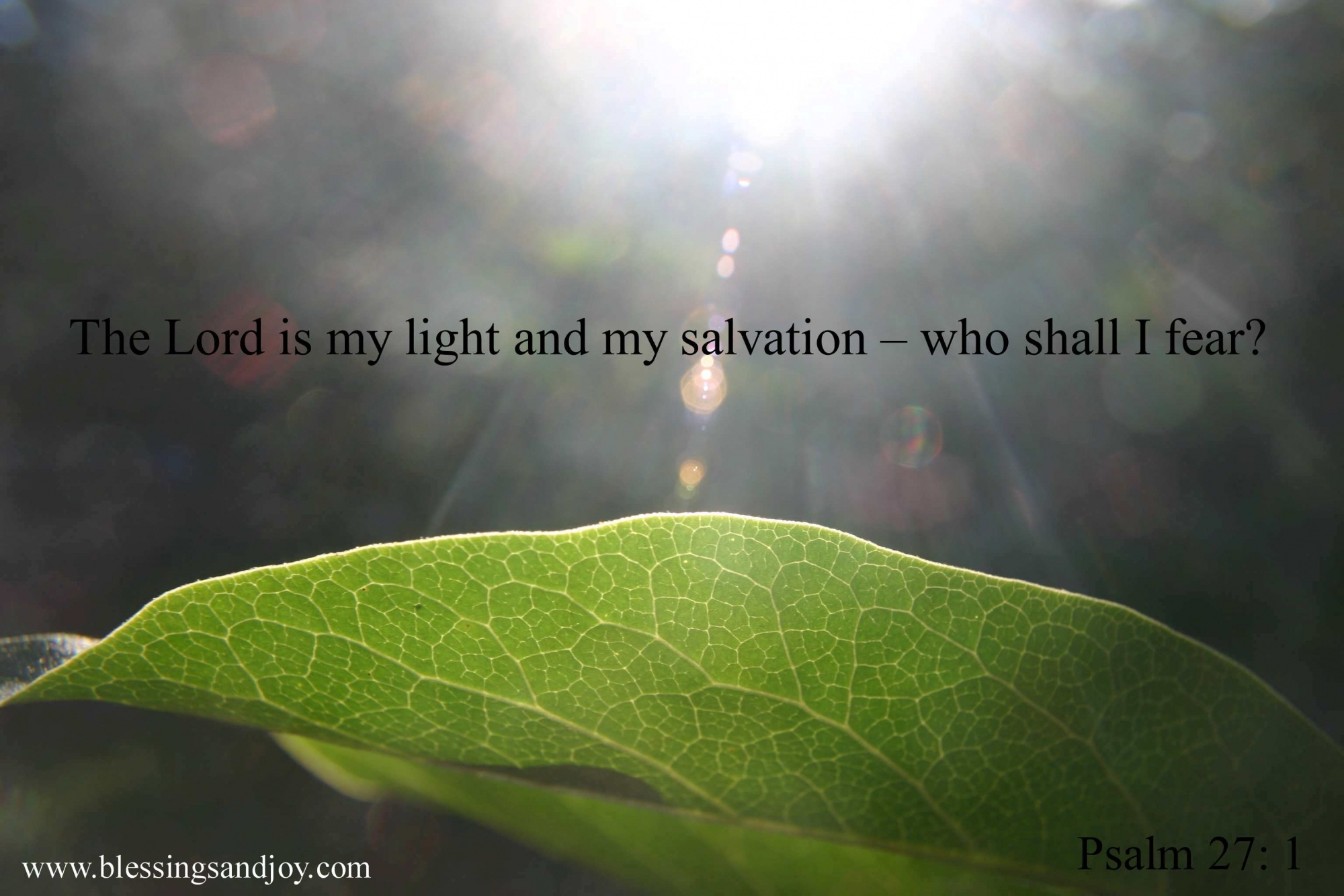 SALVATION_Psalm_27_1_The_Lord_is_my_light_and_salvation.ch-43
