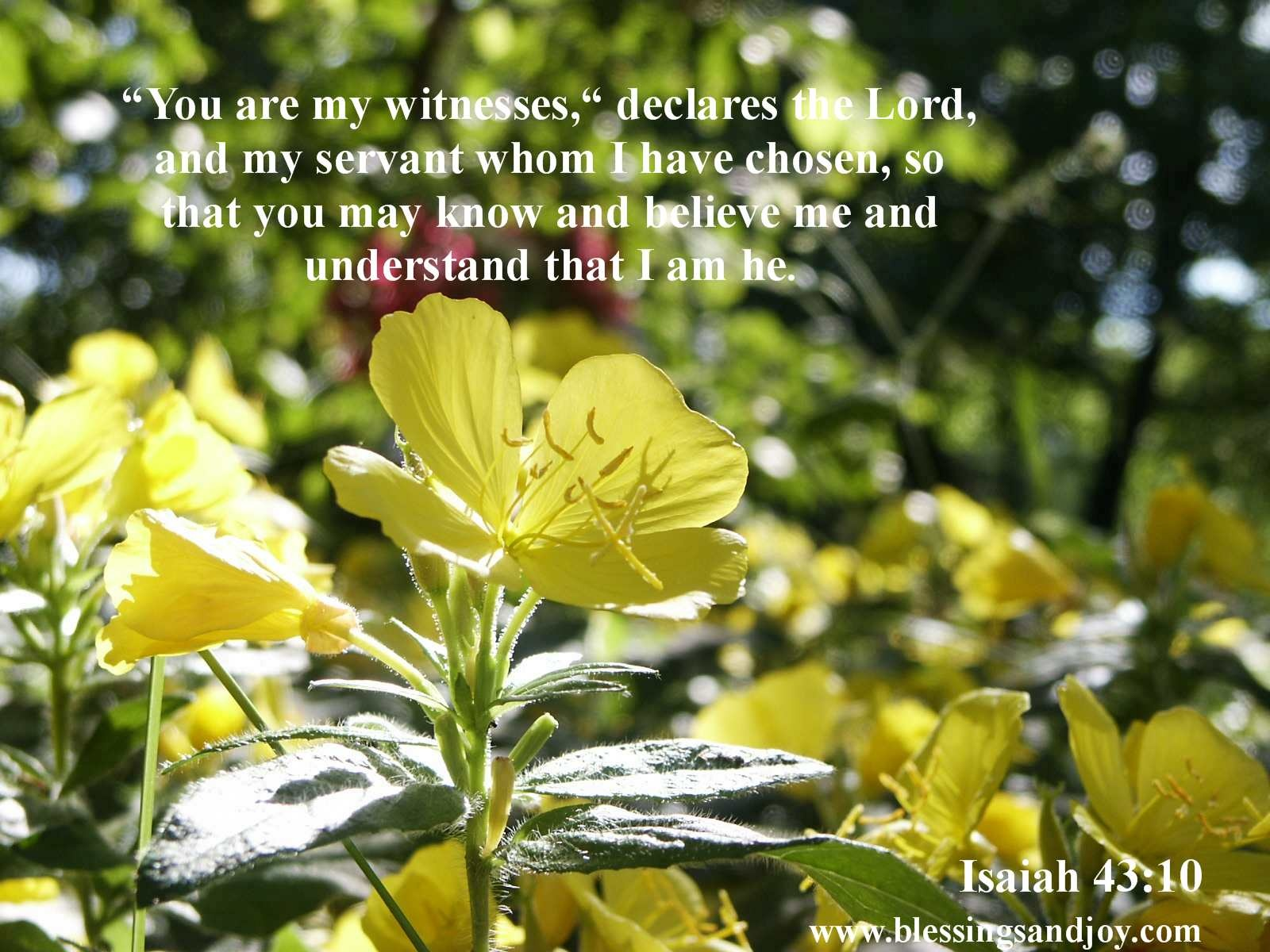 Sharing_your_faith_you_are_my_witness_Isaiah_43_10-23