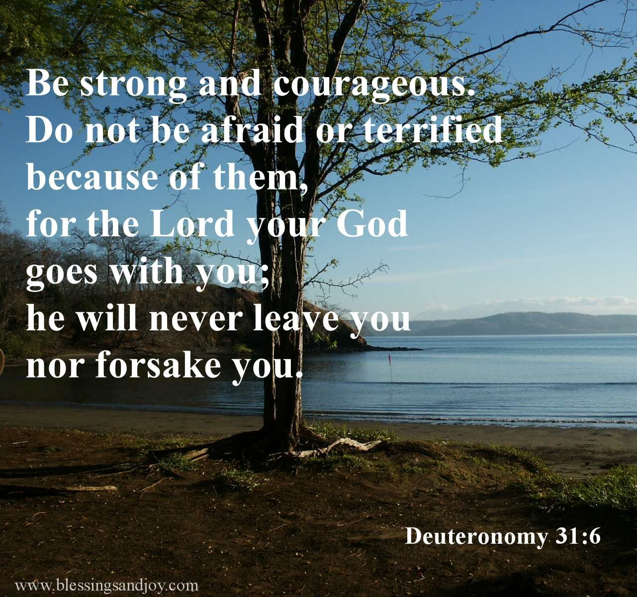 Deuteronomy_31_6_Be_strong_and_courageous-54