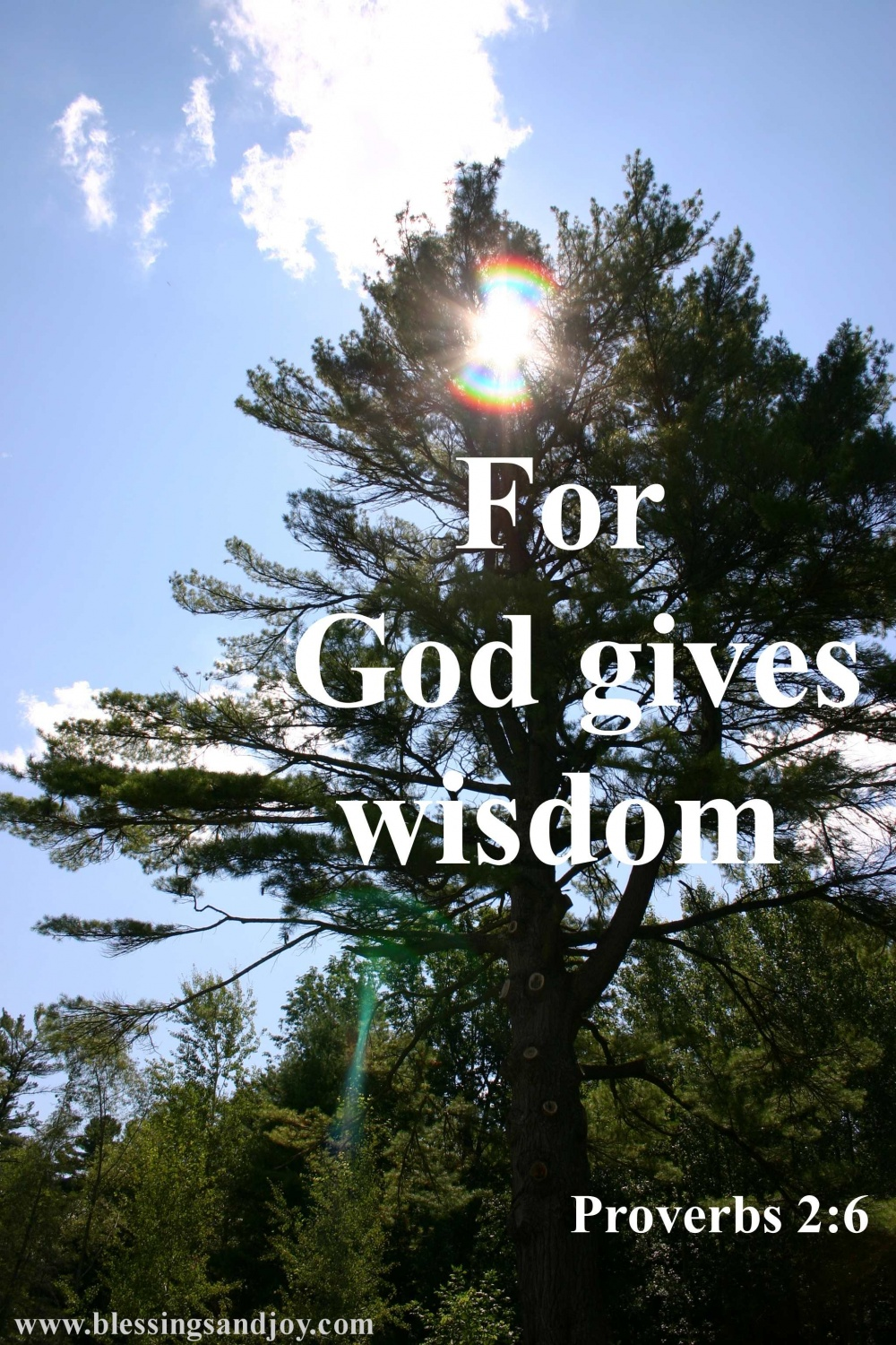 For_God_gives_wisdom-26