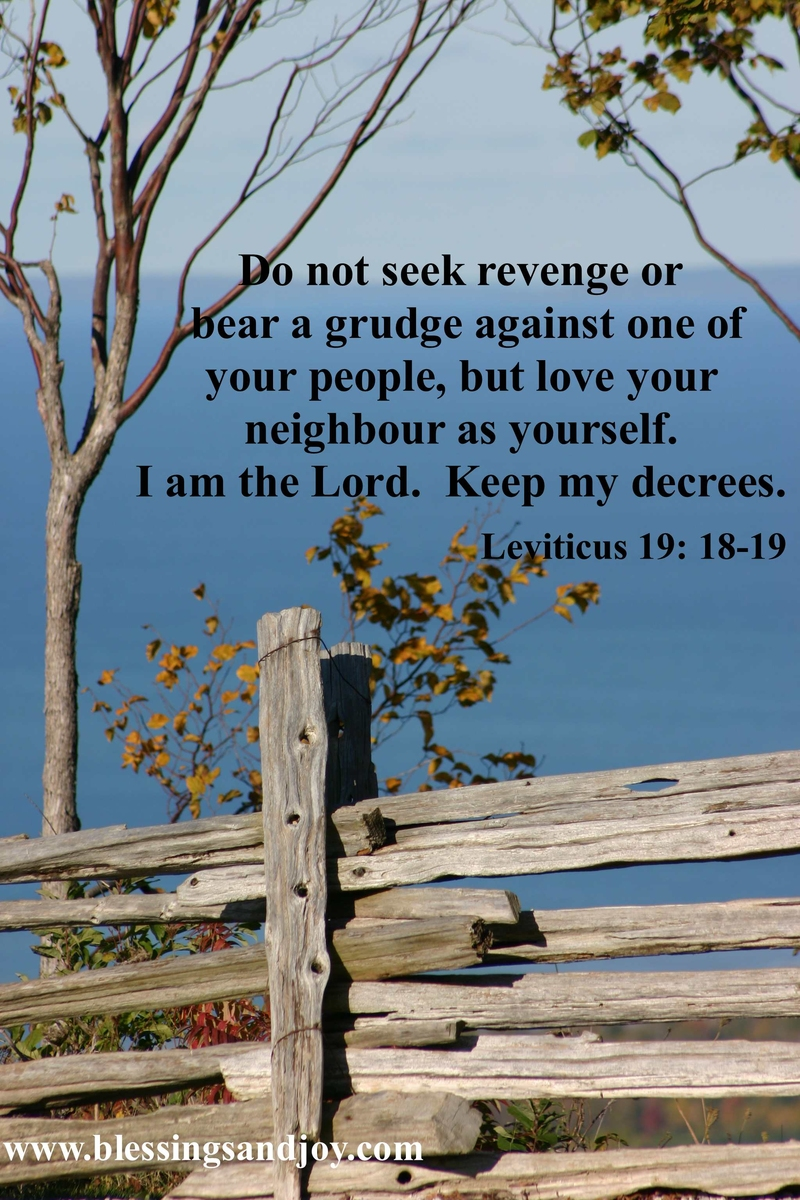 leviticus-19-18-to-19-weekly-bible-verse-3