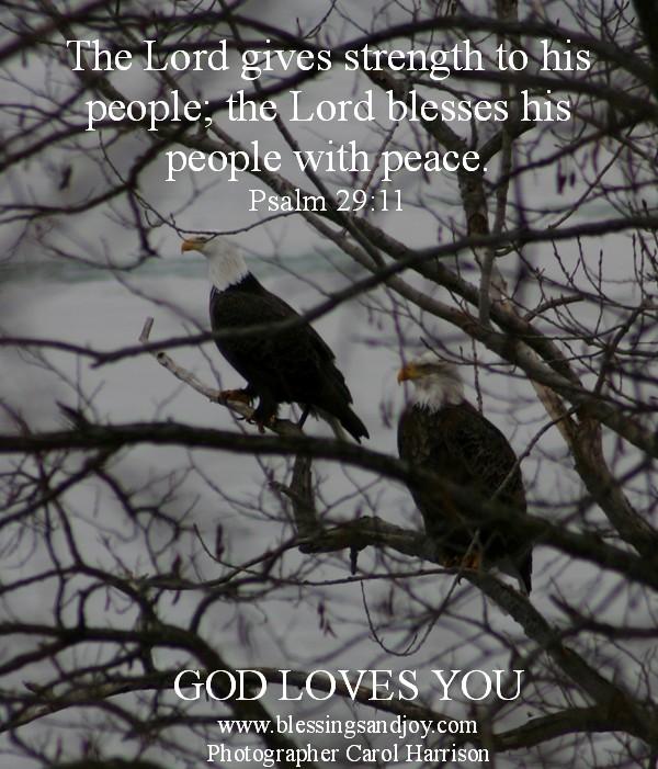 Psalm29Verse11August32015